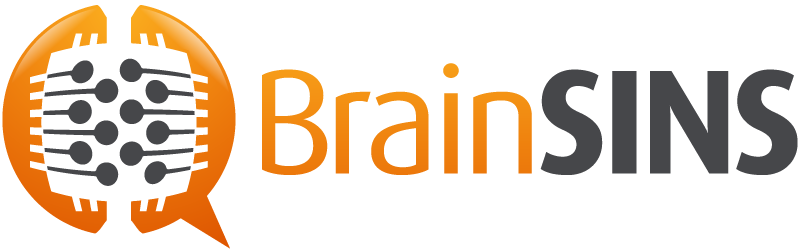 BrainSINS's results in an eCommerce store
