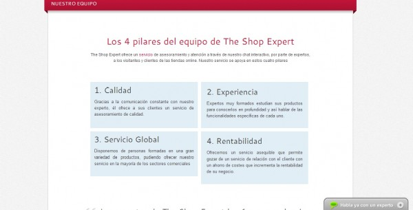 the_shop_expert_herramientas_ecommerce